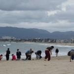 Kurmalliance_Coastal_Clean_Up_Day
