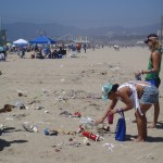 beach clean up for website